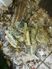 κομμάτια από λίπος που έβγαλαν από σωλήνες